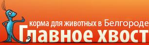 Главное Хвост Интернет Магазин Белгород